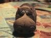 hippo07